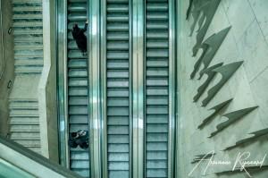 JHS Design Fotografie Spijkenisse-10